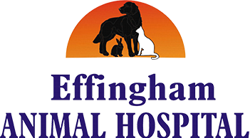 Effingham Animal Hospital